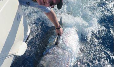 Yakala Bırak Balıkçılığı